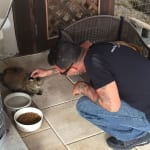 Noah takes a moment and spends a little quality time with one of the cats. 150x150 Humane Society of Tampa Bay